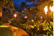 Cool Tiki Torches To Light Up Your Magical Evenings
