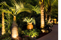 Palm Trees LED Lighting
