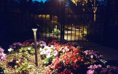 6 Secrets to Managing My Landscape Lighting. Ounce of Prevention.